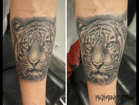 Realistic Healled Tiger Portrait Black Grey Forearm