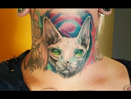 Sphynx Cat Color Neck