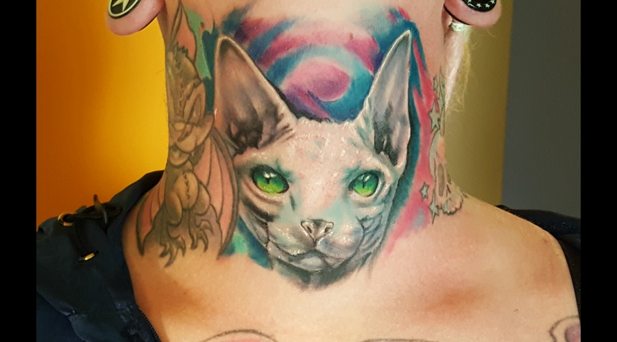 Sphynx Cat Color Neck