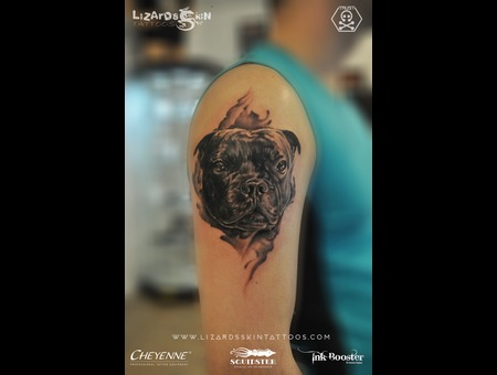 Dog Portrait  Love For His Pet Black Grey Arm