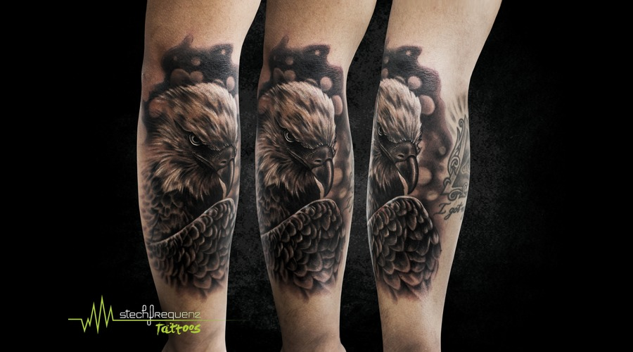 Eagle  Realistic  Bird  Black And Grey Black Grey Arm