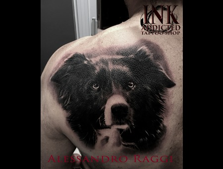 Dog Realistic Animal Portrait Black Grey Shoulder