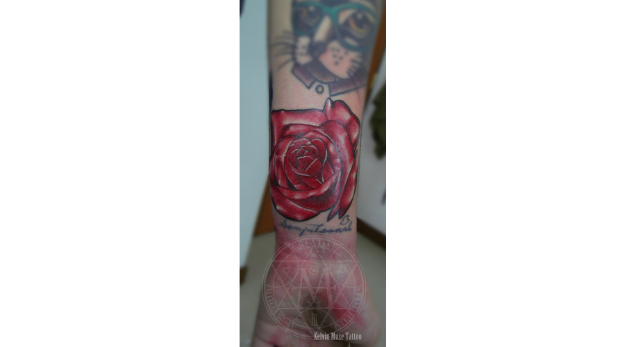 Red Rose Color Arm