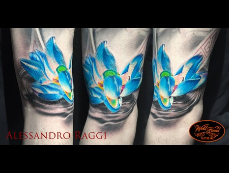 Loto Flower Color Realistic Blue Japanese  Color Arm