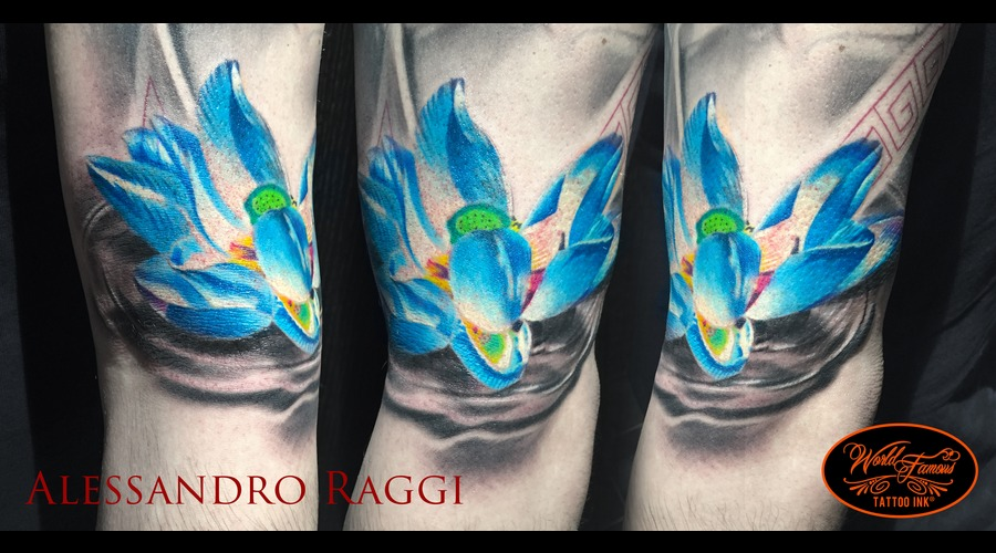 Loto Japanese Flower Realistic Color Color Arm