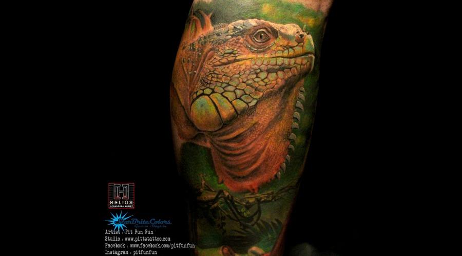 Realistic Iguana Tattoo  Color Lower Leg