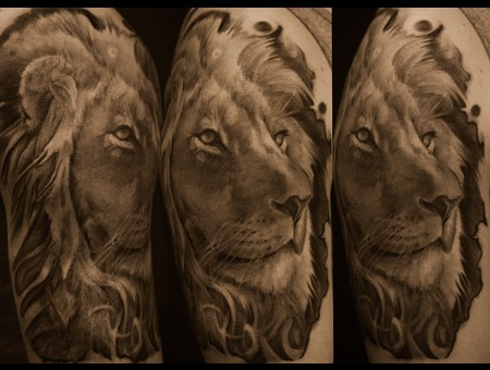 Lion Black Grey Arm