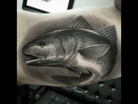 Black And Grey  Fish   Redfish  Realism   Black Grey