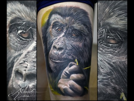 Ape  Chimpanzee Color Thigh