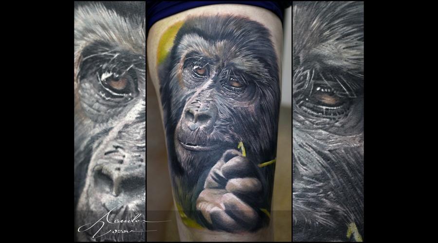 Ape  Chimpanzee Color Thigh