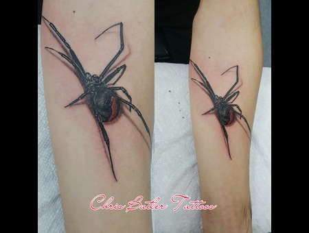 Wildlife  Spider  Realistic  Realism  3d Color Forearm