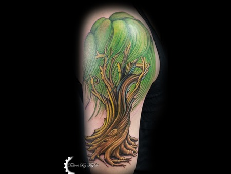 Willow Tree  Color Tattoo  Tree Tattoo  Tree Color Arm