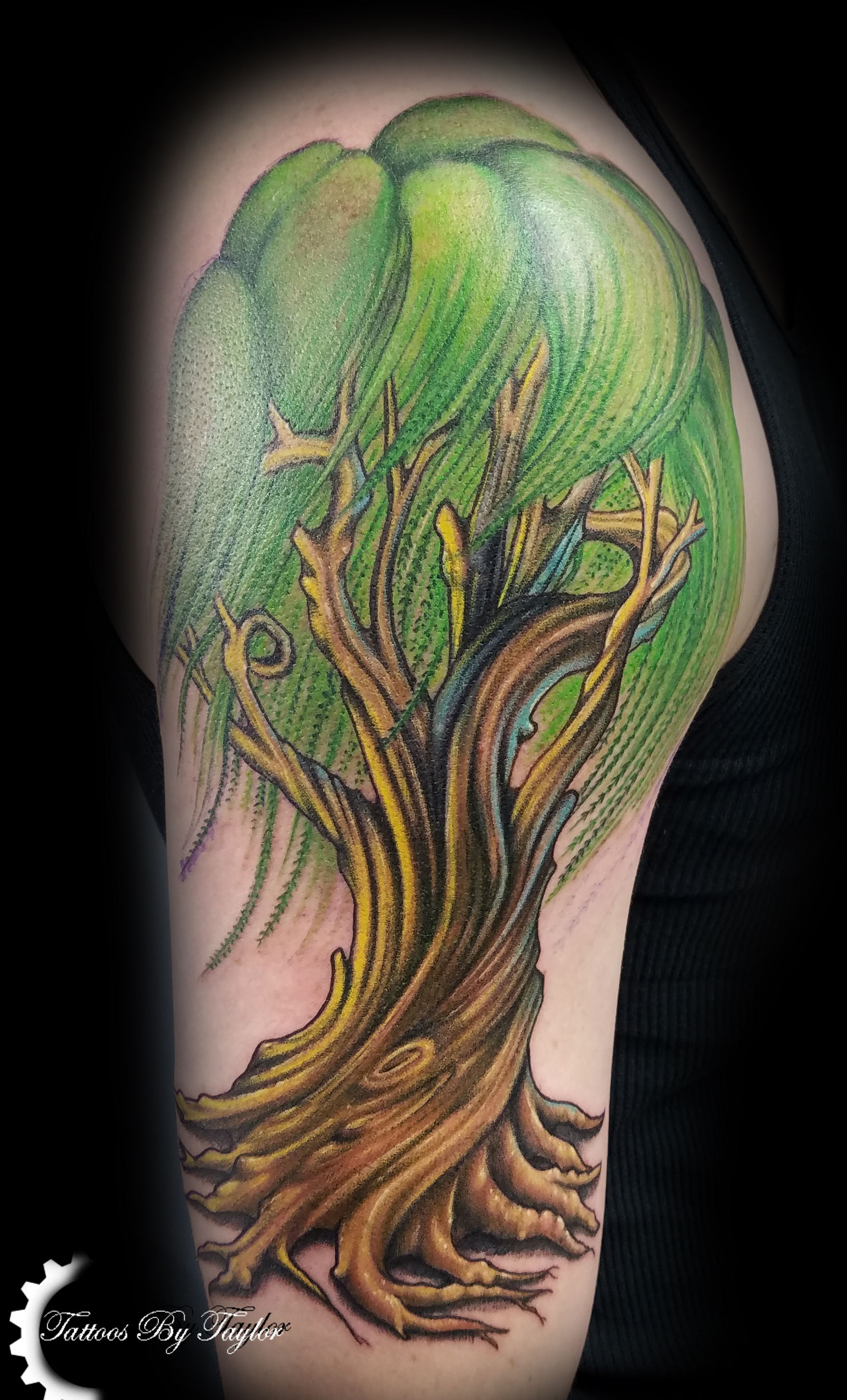 Taylor kuhlman certified artist for Willow tree tattoo