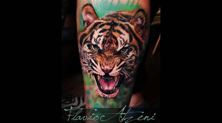 Tiger  Realistic  Coloured  Animal  Color Lower Leg