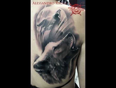 Spirit Wolf Realistic Black Dark Shading  Black Grey Back