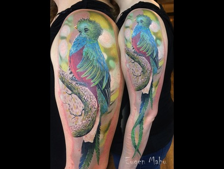 Tattoo  Art  Realistic  Bird Color Arm