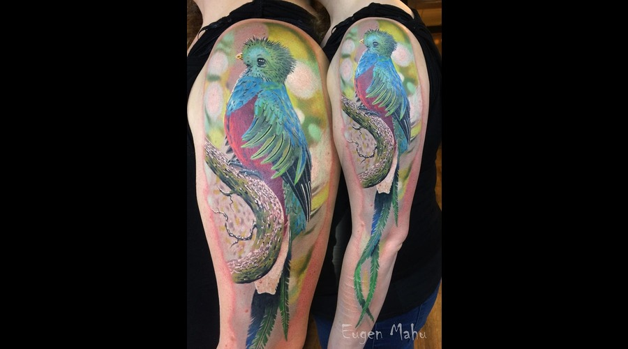 Tattoo  Art  Realistic  Bird Color Arm