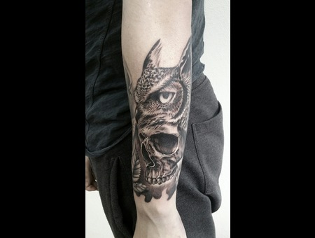 Owl Skull  Black Grey