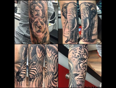 Sleeve  Africa  Realism  Animal  Portrait  Details Black Grey Arm