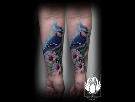 Bird Blue Jay Color Forearm