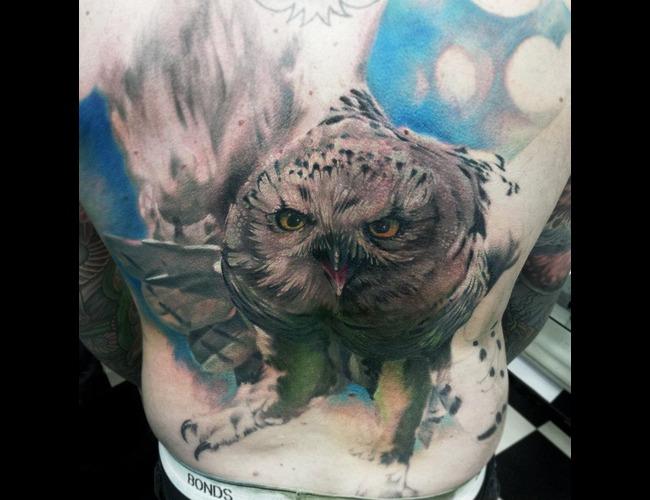Portrait  Realistic  Owl