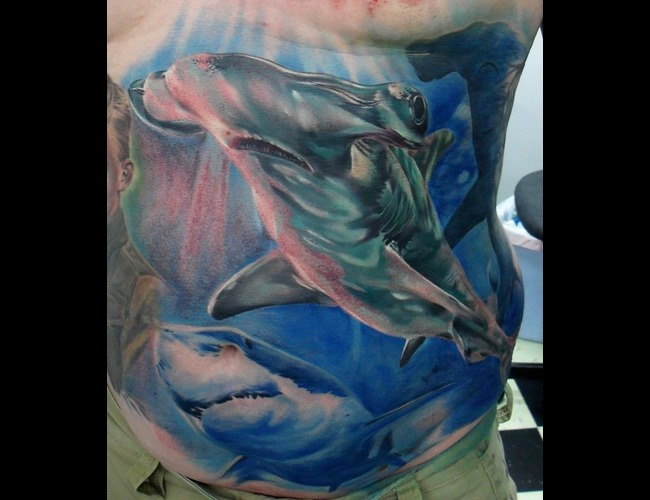 Portrait  Realistic  Shark