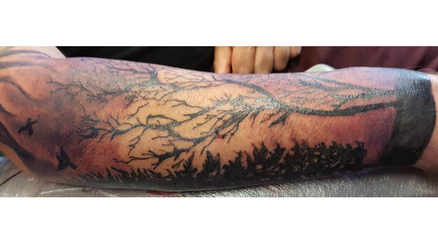Trees  Black  Colour  Birds  Purple  Night  Spooky  Lower Sleeve   Color Forearm