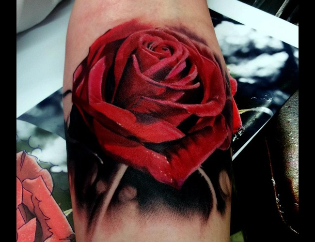 Portrait  Realistic  Rose
