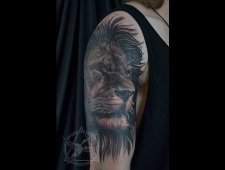 Realistic Lion  Shoulder Tattoo  Animal  Black Grey Shoulder