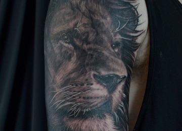 realistic Lion, shoulder tattoo, animal,
