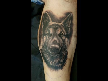 Dog Sogportrait Realistic Black Grey Lower Leg