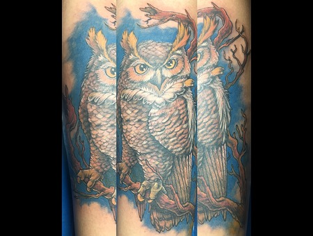 Owl Watching Color Arm