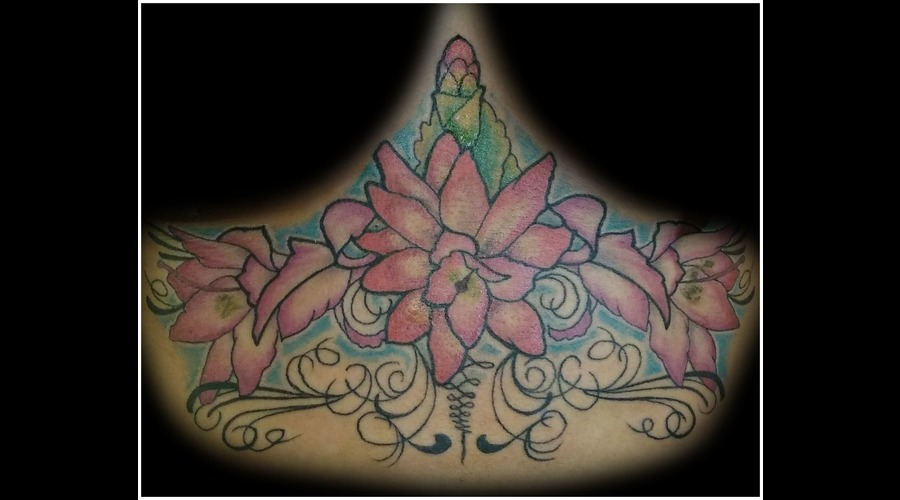 Stomach  Underboob  Cactus Flower  Flower Color Chest