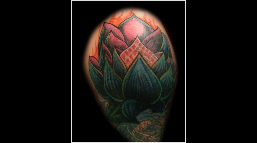 Cover Up  Cover Up  Lotus   Color Shoulder
