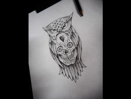 #Sketches  #Owl