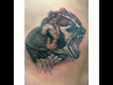 Tattoo  Badger  Wisconsin Badgers  Wisconsin Fotball  Portrait  Wildlife Color Ribs