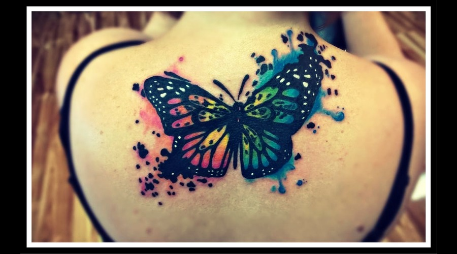 Watercolor  Butterfly  Cover Up Color Back