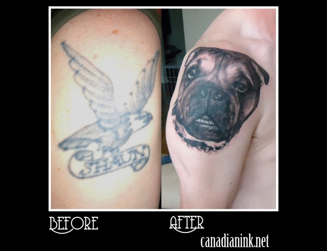 Cover Up Bull Dog Black White