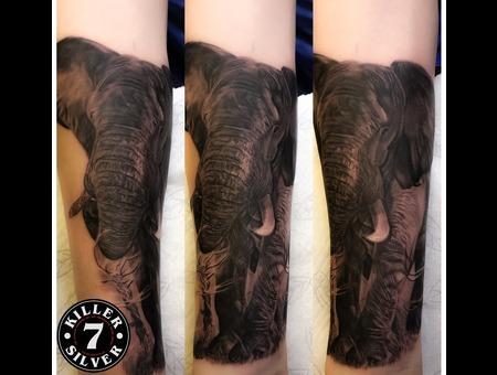 Elephant Black Grey Forearm