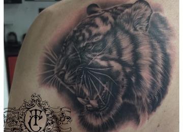 Tiger,animal,realistic blackandwhite