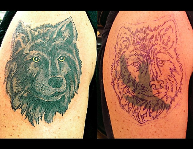 Cover Up  Wolf  Arm Tattoo Black White
