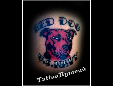 Pitbull  Dog  Red  Red Dog  Navy  U.S. Navy Color Arm