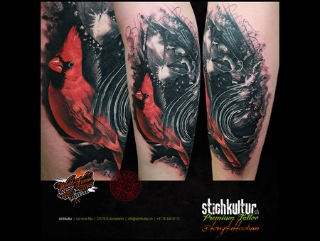 Coverup  Northerncardinal Color