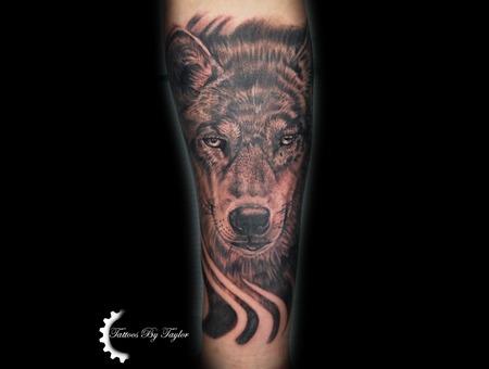 Wolf  Black And Grey Black Grey Forearm
