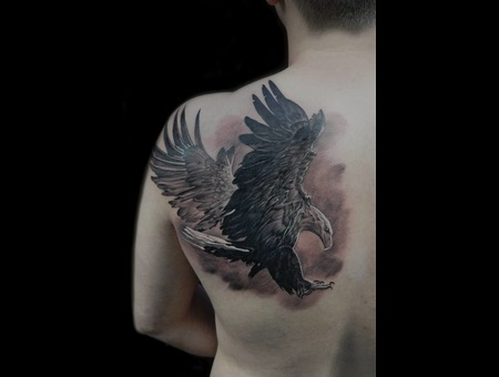 Eagle Black Grey Back
