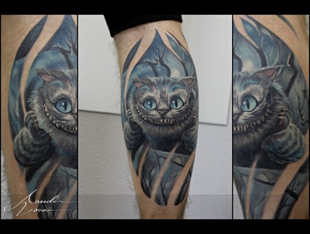 Cheshire  Cat Color Lower Leg