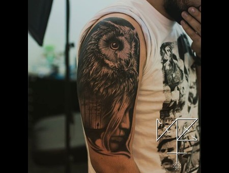 Owl Black Grey Arm
