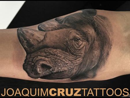 Rhino Black Grey Arm
