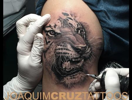 Tigre Black Grey Arm