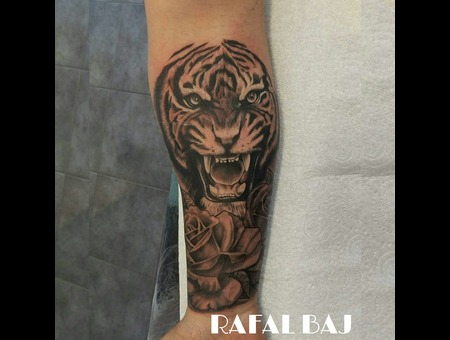 #Tiger #Rose Black Grey Forearm